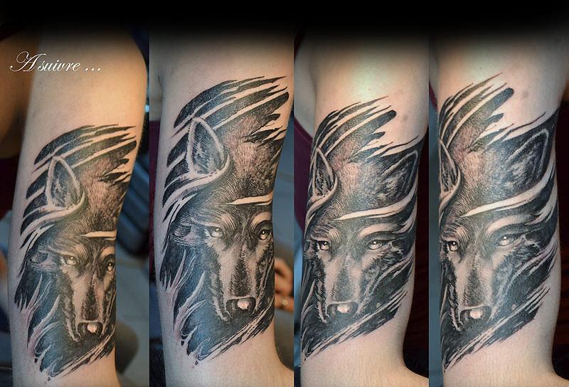 virg-wolf.jpg